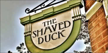 The Shaved Duck in St. Louis